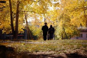 старики и осень