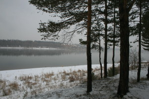 leto-osen-2016-196