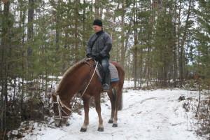 Береги коня