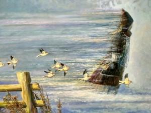 Быстрее птицы